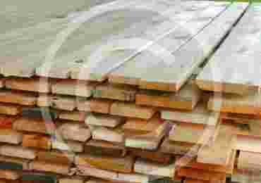 Wood Market Statistic and Tendecies